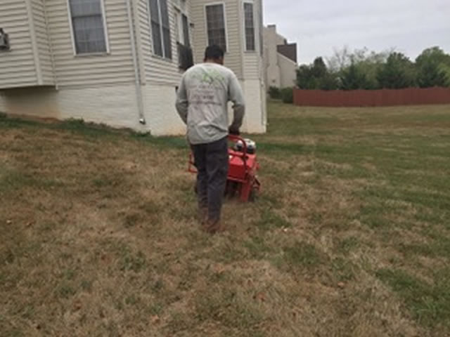 Your Landscape Partner Northern Virginia Residential Lawn Care